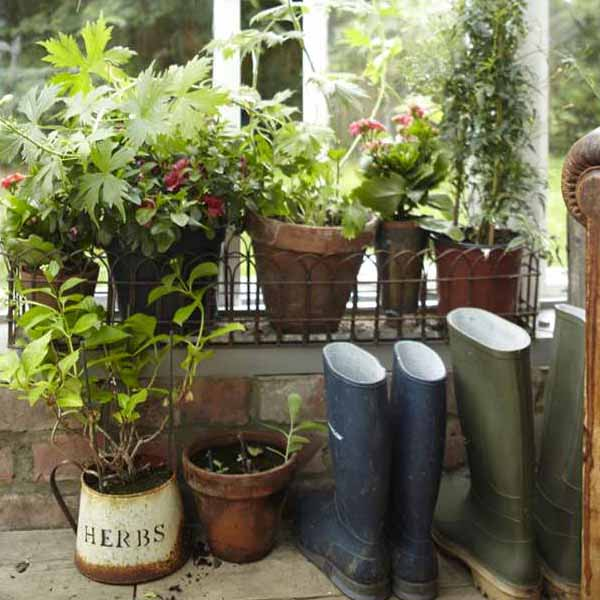 January Decorating Ideas: JANUARY GARDEN TO DO'S FOR WARM WEATHER OUTDOOR
